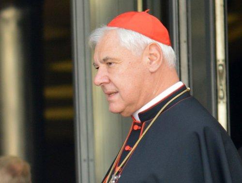 Кардинал Герхард Мюллер