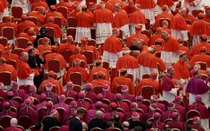 «Ладья Петрова — как корабль без кормчего»: Группа католических ученых поддержала четырех кардиналов