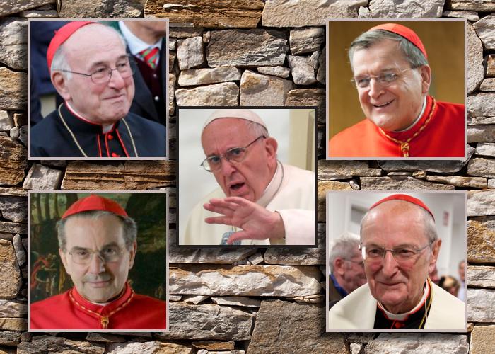 Dubia Четырех кардиналов: полный текст и сопроводительная документация